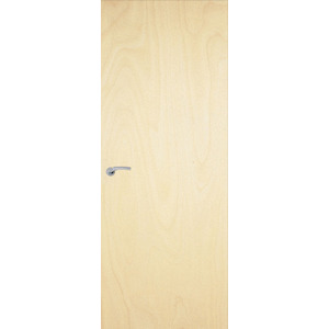 1981x762mm Popular Fireshield Door