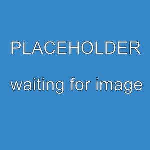 Lecico Urinal Bowl Boxed Single Pack
